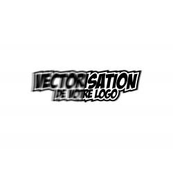 Vectorisation de votre logo